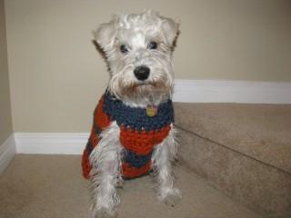 Winston's Sweater