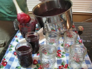 canning concord grape jam