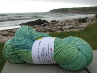 Tanis Fiber Arts DK weight in Spearmint, photo © Lesley Karpiuk / pinktoque